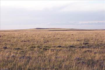 Tbd Fir Way (Med Bow Tr46a), Rock River, WY 82083