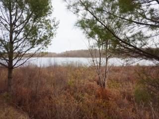 10850 N Mackinaw Hwy, Carp Lake, MI 49718