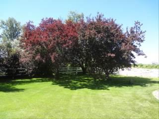 4796 S. 5Th W., Idaho Falls, ID 83402