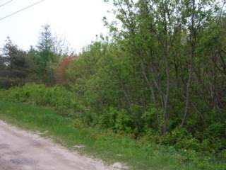 Lot A Bonair Street, Grand Digue, NB E4R 3
