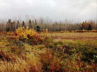 Lot 1 Weisner Rd, Lakeville, NB E1H 1