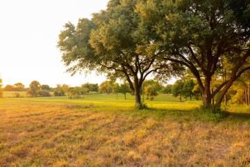 Photo of 8300 Lone Star Road  Washington  TX
