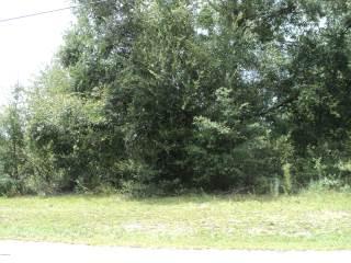 0 Se 59Th St, Ocklawaha, FL 32179