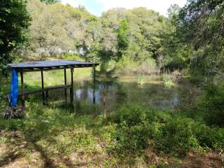 Photo of 18487 SE 18th Street Road  Silver Springs  FL