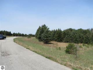 Photo of 10935 Spruce Hollow Trace  Fife Lake  MI