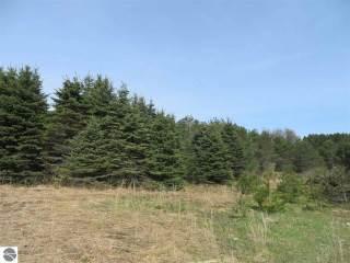 10935 Spruce Hollow Trace, Fife Lake, MI 49633