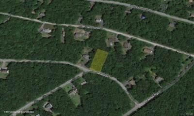 Lot 12 Seneca Road, Penn Forest, PA 18210