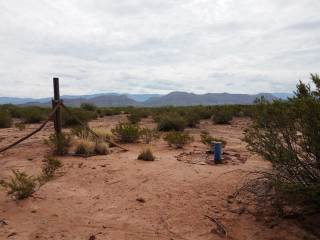 Rattlesnake, Tularosa, NM 88352