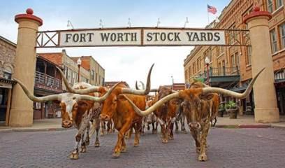 741 High Summit Trail, Fort Worth, TX 76131