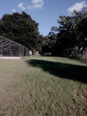 12116 Lane Park Road, Tavares, FL 32778