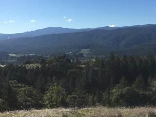 13731 Clow Ridge, Philo, CA 95466