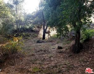 Photo of 30473 MULHOLLAND Highway  Agoura Hills  CA