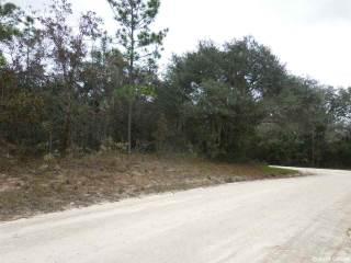 Photo of 14991 SE 4th Street  Williston  FL