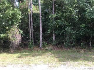 Photo of 466 SW Garfield St  Palm Bay  FL