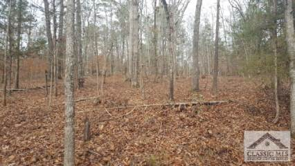 176 Red Fox Run, Athens, GA 30605