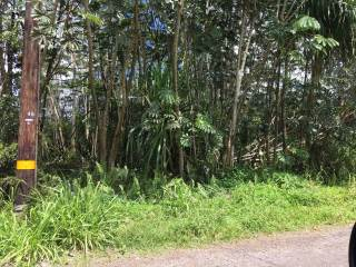 Photo of 14TH AVE  KEAAU  HI