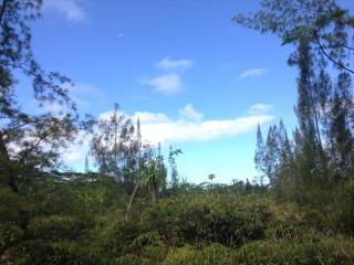 Photo of 1ST AVE  KEAAU  HI