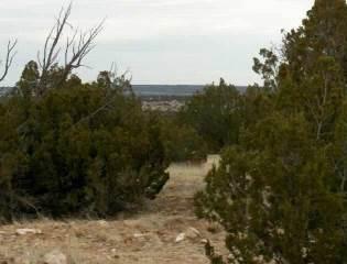 Photo of Lot 302 Chevelon Canyon Ranch  Overgaard  AZ