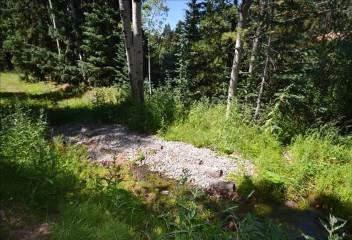 8928 Black Mountain Drive, Conifer, CO 80433