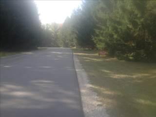 Lakewood Drive, Cadillac, MI 49601