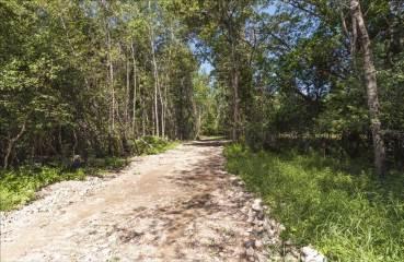 6 Acres Deer Lake Rd, Marinette, WI 54143