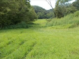 131 Plantation Drive, Fraziers Bottom, WV 25082