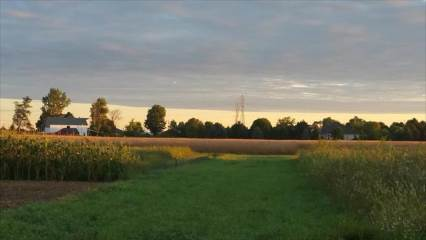 9402 Parcel 2 Noward Rd, Waterville, OH 43566