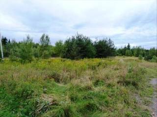 Photo of Lot 1110 Rte 134 2 acres  Shediac Cape  NB