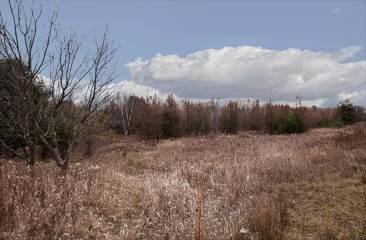 Photo of 44 Acres Bay De Noc Drive  Menominee  MI