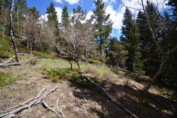 13 Paradise Valley Parkway, Black Hawk, CO 80422