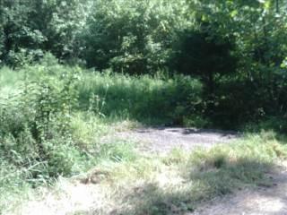 0 Buck Road, Leon, WV 25123