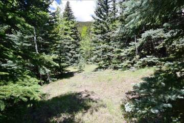 Lot 14 Witter Gulch Road, Evergreen, CO 80439