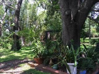 3740 Rambler Ave, Saint Cloud, FL 34772