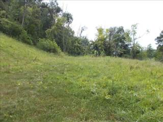 422 Custer Ridge Road, Buffalo, WV 25033