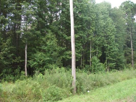 Tract 3 Hwy 117, Natchitoches, LA 71457