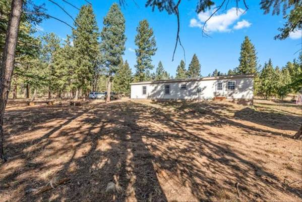 580 Forest Drive, Bailey, CO 80421