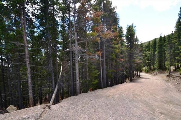 0 Sawmill Lane, Idaho Springs, CO 80452