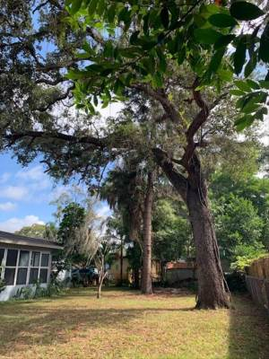 4660 22Nd Ave S, St Petersburg, FL 33711